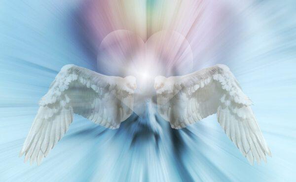 heart, angel, wing-669552.jpg